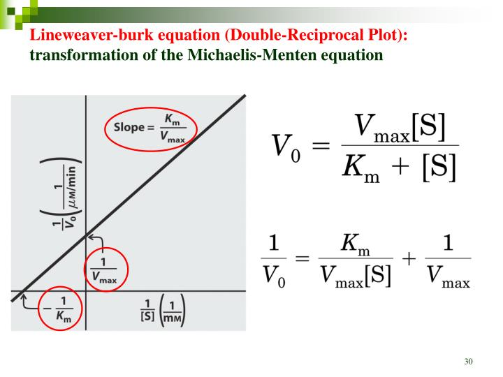 Lineweaver-burk equation (Double-Reciprocal Plot):