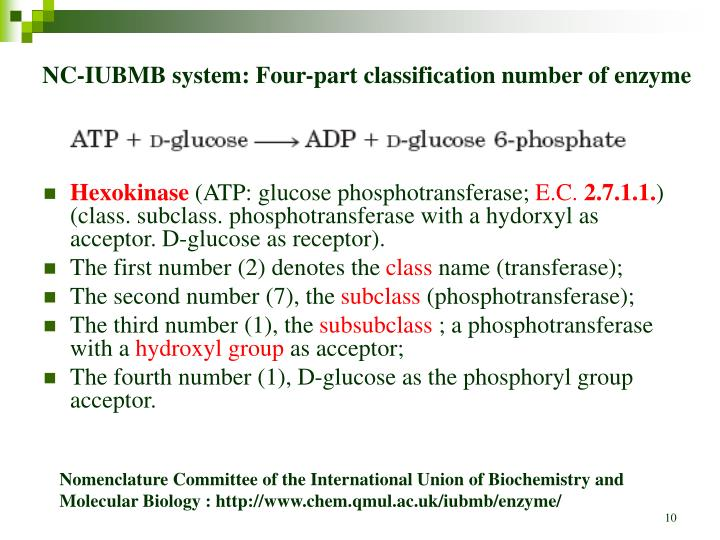 NC-IUBMB system: Four-part classification number of enzyme
