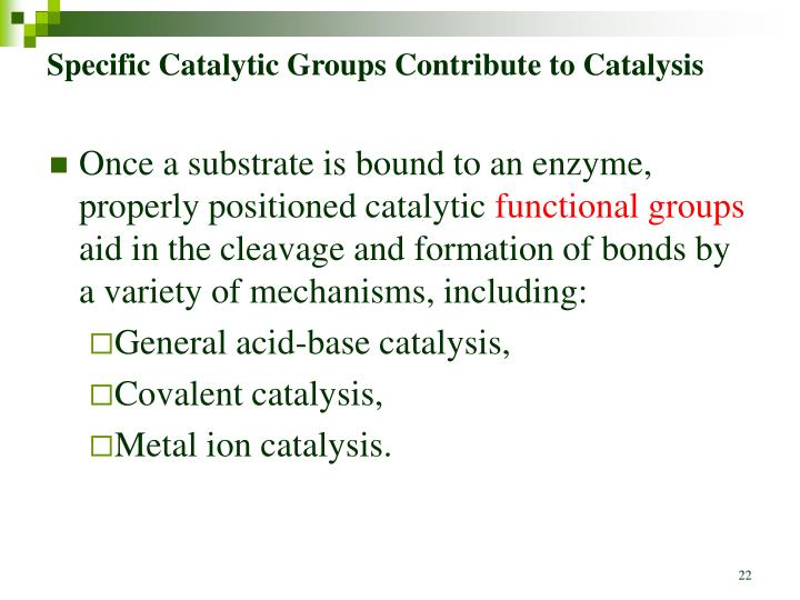 Specific Catalytic Groups Contribute to Catalysis