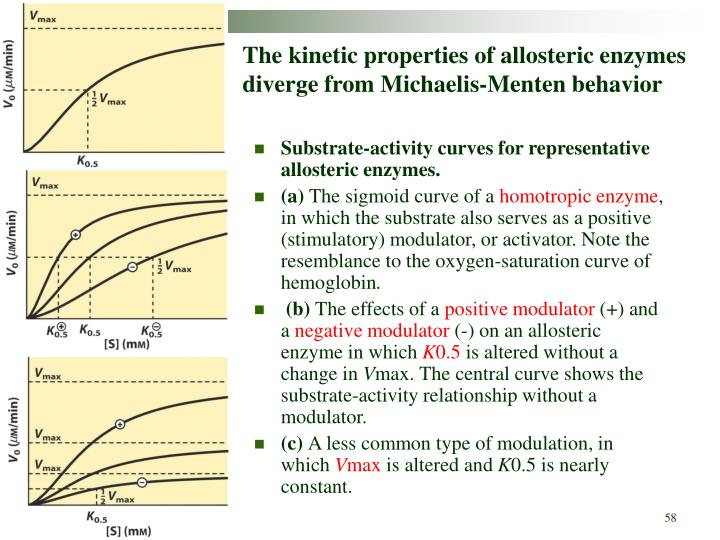 The kinetic properties of allosteric enzymes diverge from Michaelis-Menten behavior