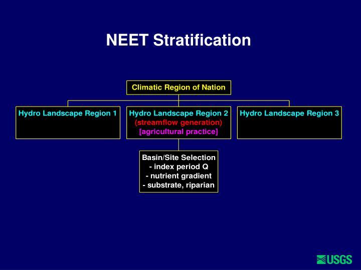 NEET Stratification