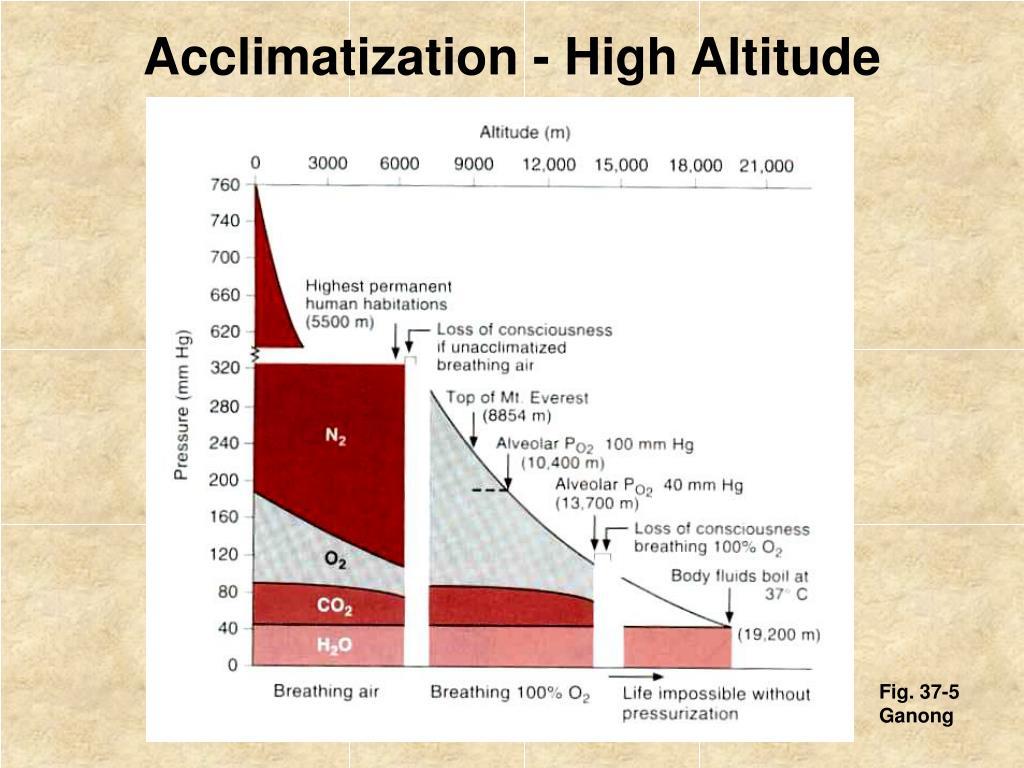 High-altitude-physiology.