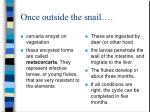 once outside the snail