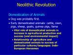 neolithic revolution6
