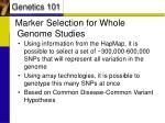 marker selection for whole genome studies