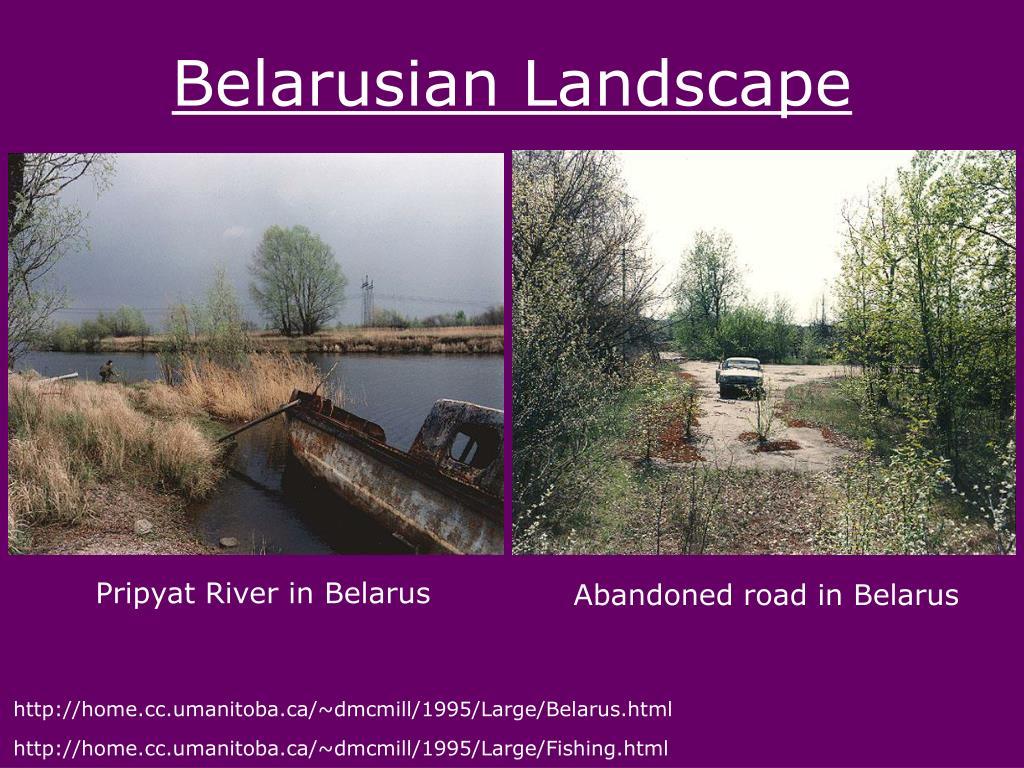 Belarusian Landscape