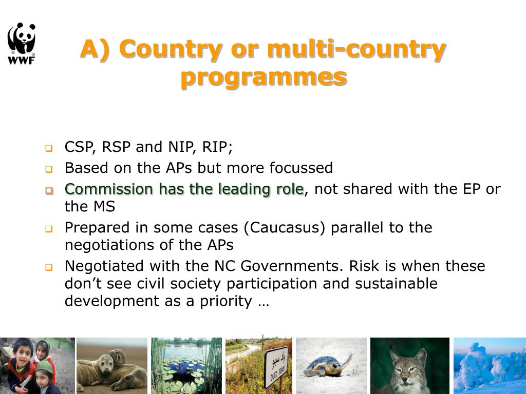 A) Country or multi-country programmes