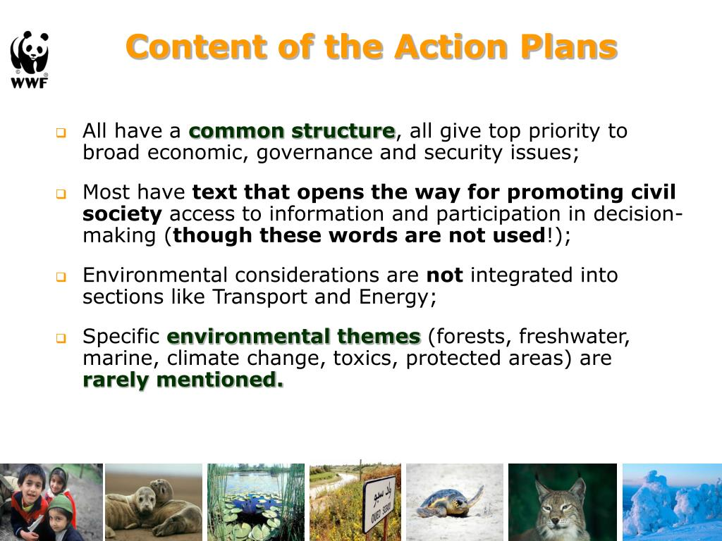 Content of the Action Plans