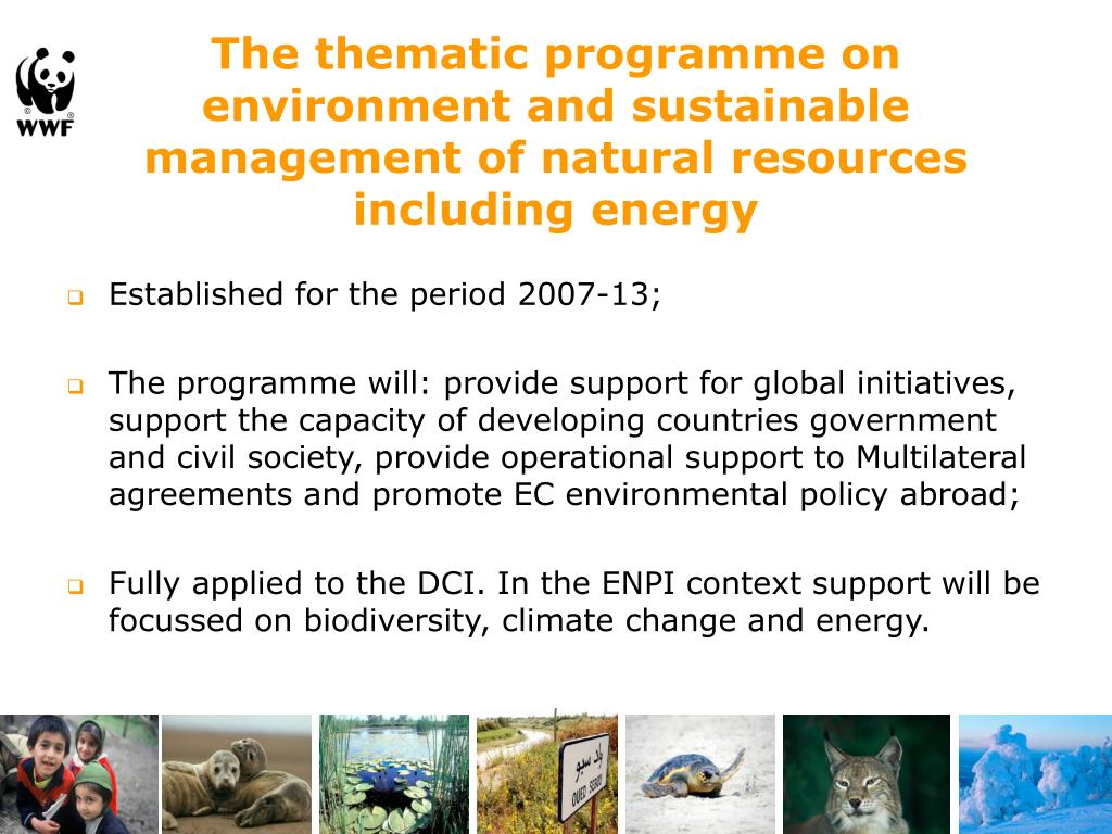The thematic programme on environment and sustainable management of natural resources including energy
