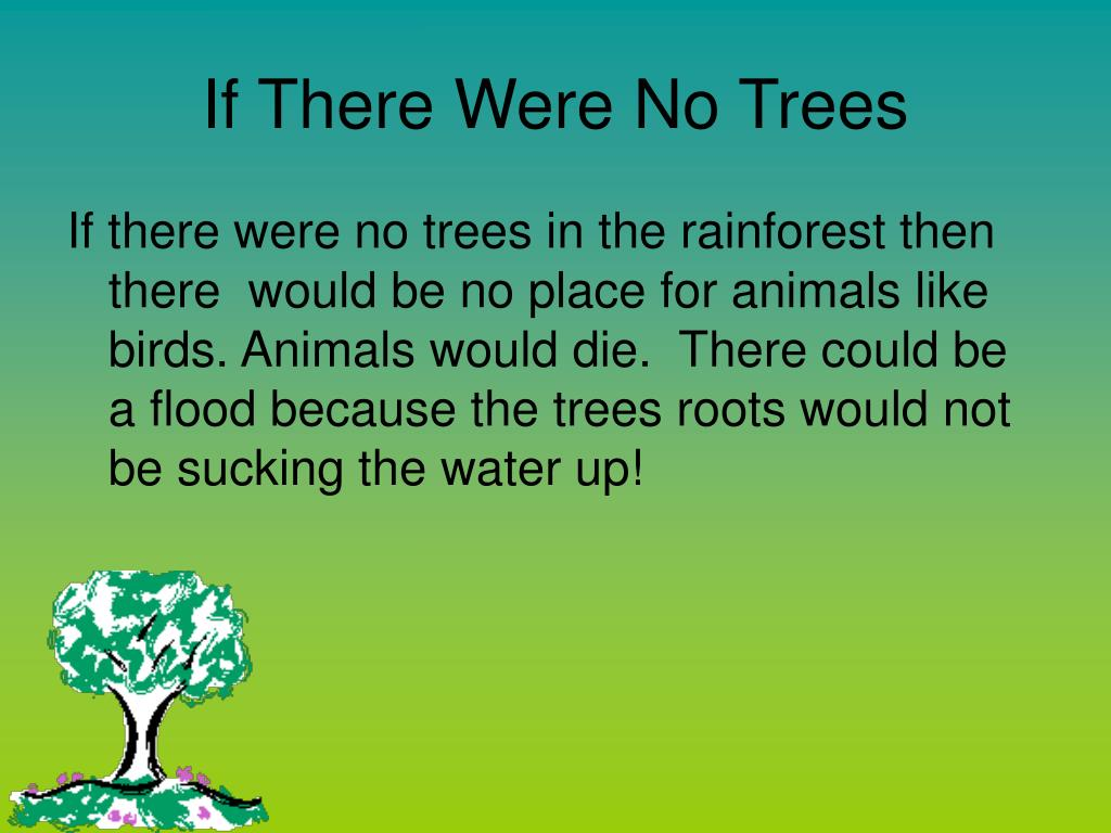 if there were no trees What would happen if there were no trees on earth essay plan: what i would think aliens would think of us if they came evolution what's going on today(occupy) war what we are doing to the earth drilling, breaking ozone layers, and trash/recycling what aliens would think of our way of life if they visited us today if aliens came to earth.