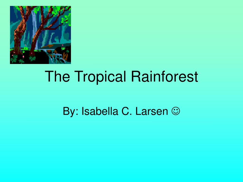 the tropical rainforest l.