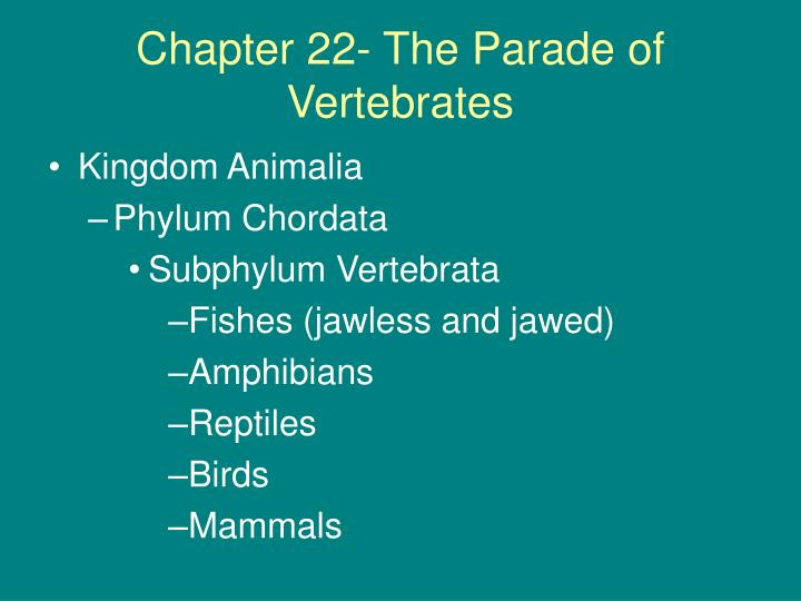 Chapter 22 the parade of vertebrates