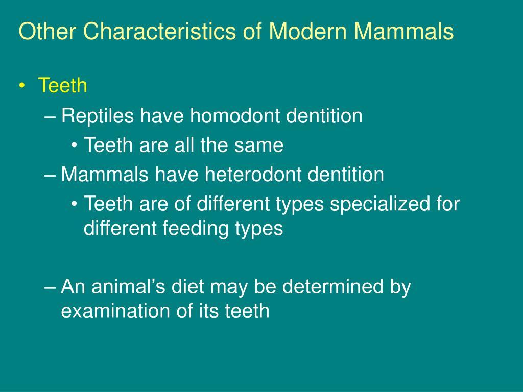 Other Characteristics of Modern Mammals