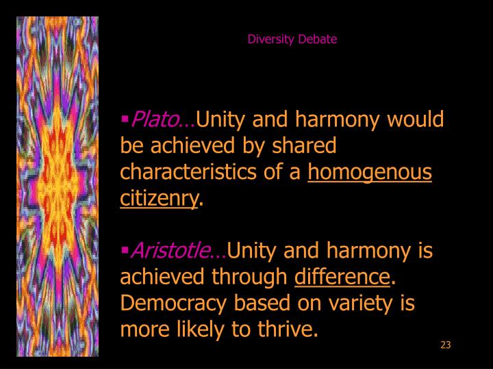 Diversity Debate