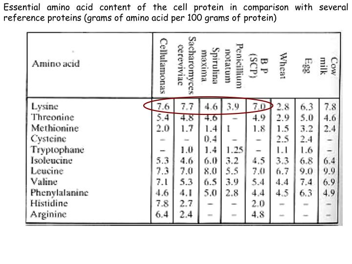 Essential amino acid content of the cell protein in comparison with several reference proteins (grams of amino acid per 100 grams of protein)