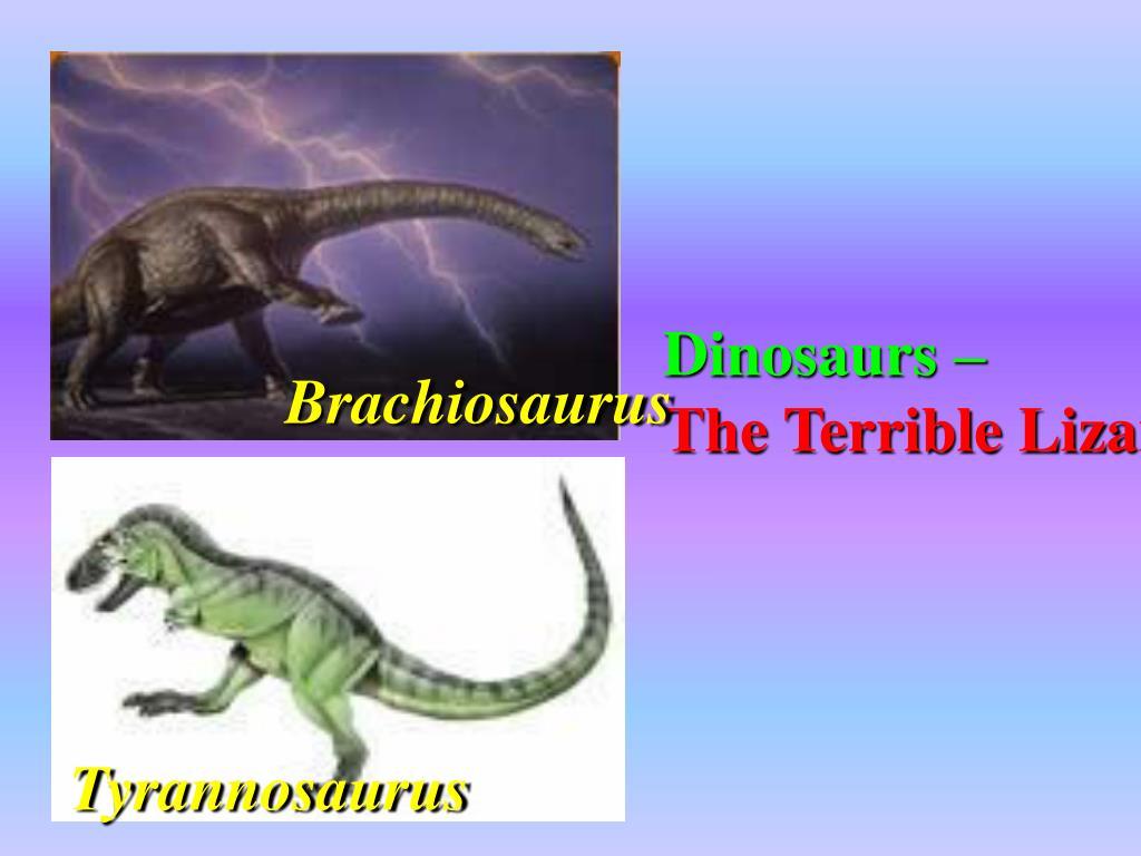Dinosaurs –