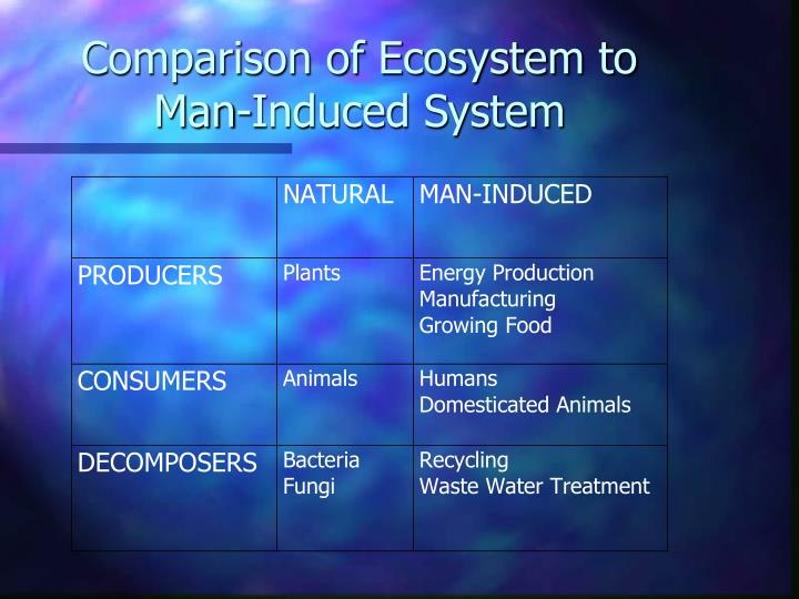 Comparison of ecosystem to man induced system