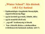 winter school kis d zisok 0 1 gy hat sai