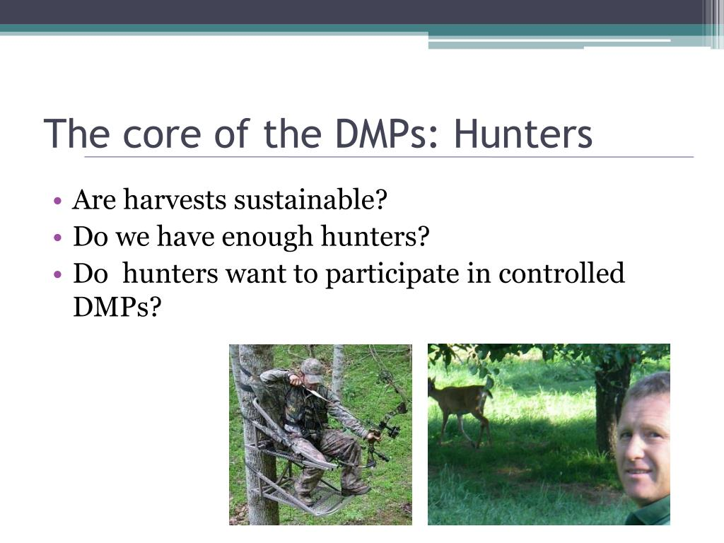 The core of the DMPs: Hunters