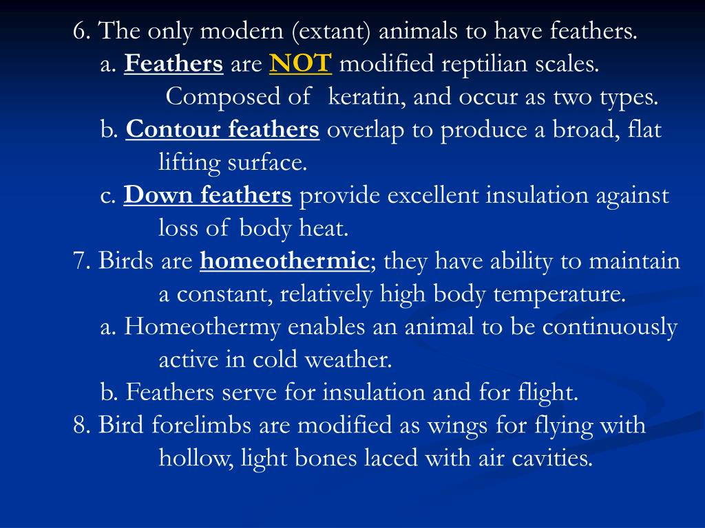 6. The only modern (extant) animals to have feathers.
