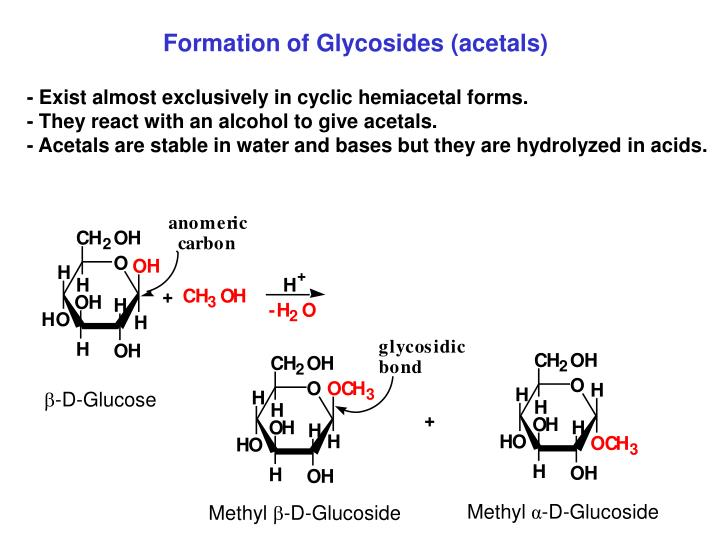 - Exist almost exclusively in cyclic hemiacetal forms.