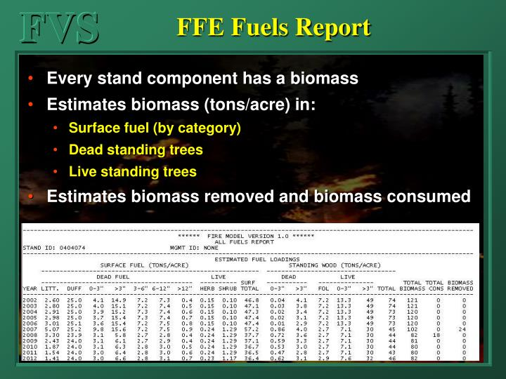 FFE Fuels Report