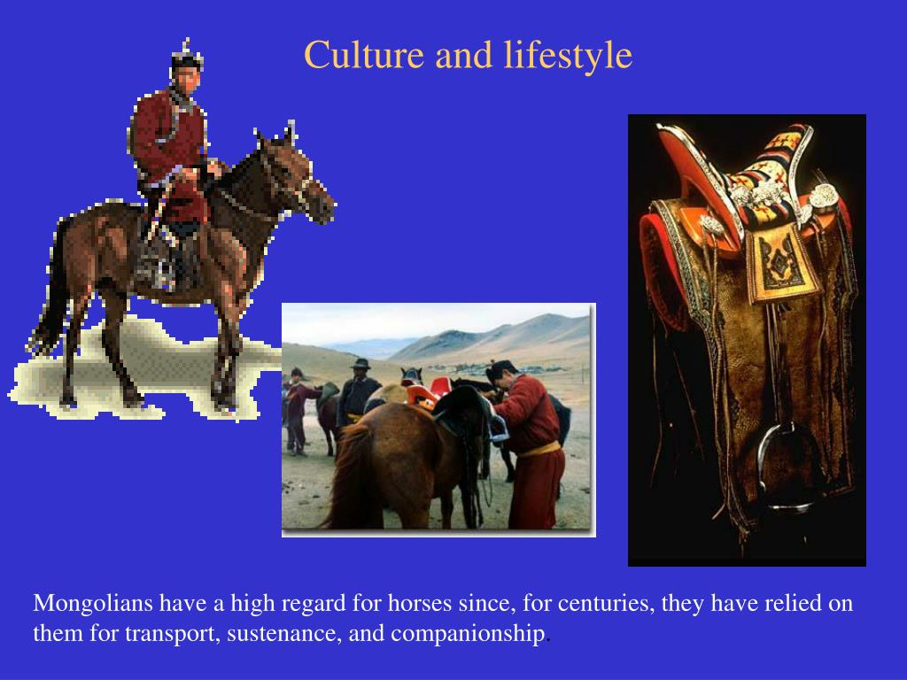 Culture and lifestyle