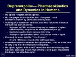 buprenorphine pharmacokinetics and dynamics in humans