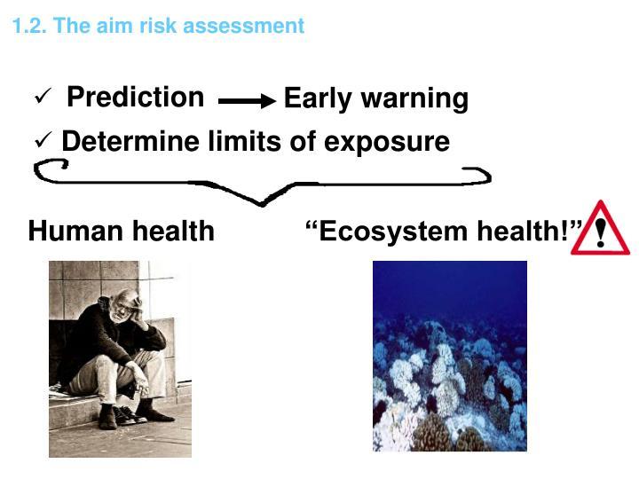 1.2. The aim risk assessment