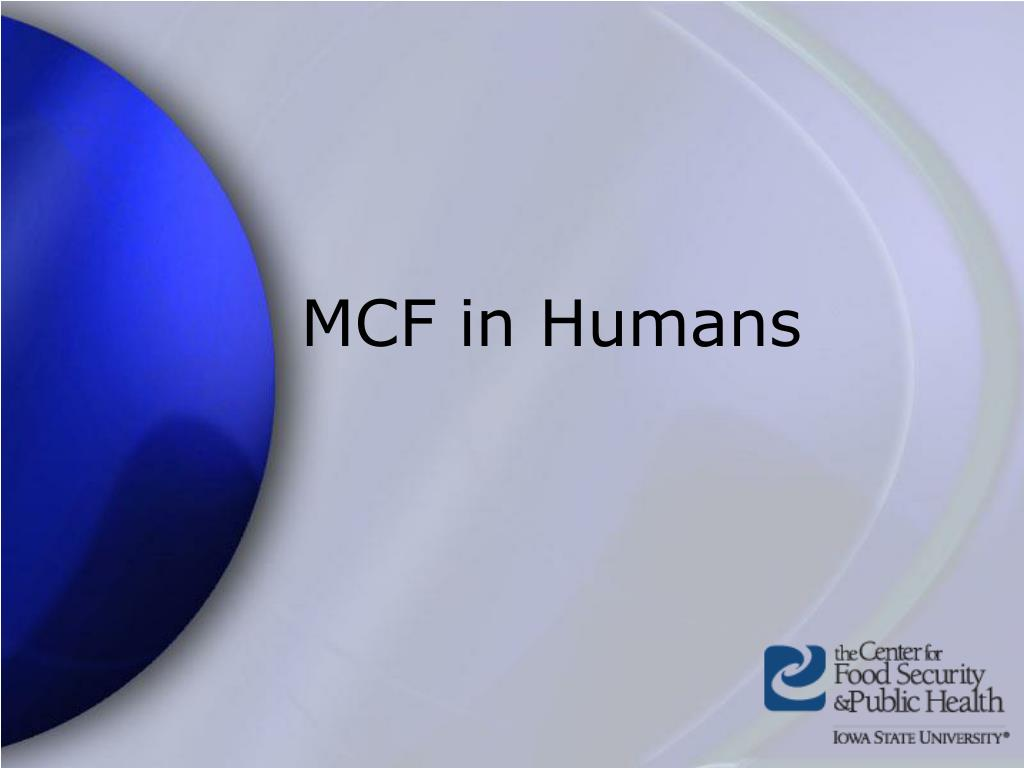 MCF in Humans
