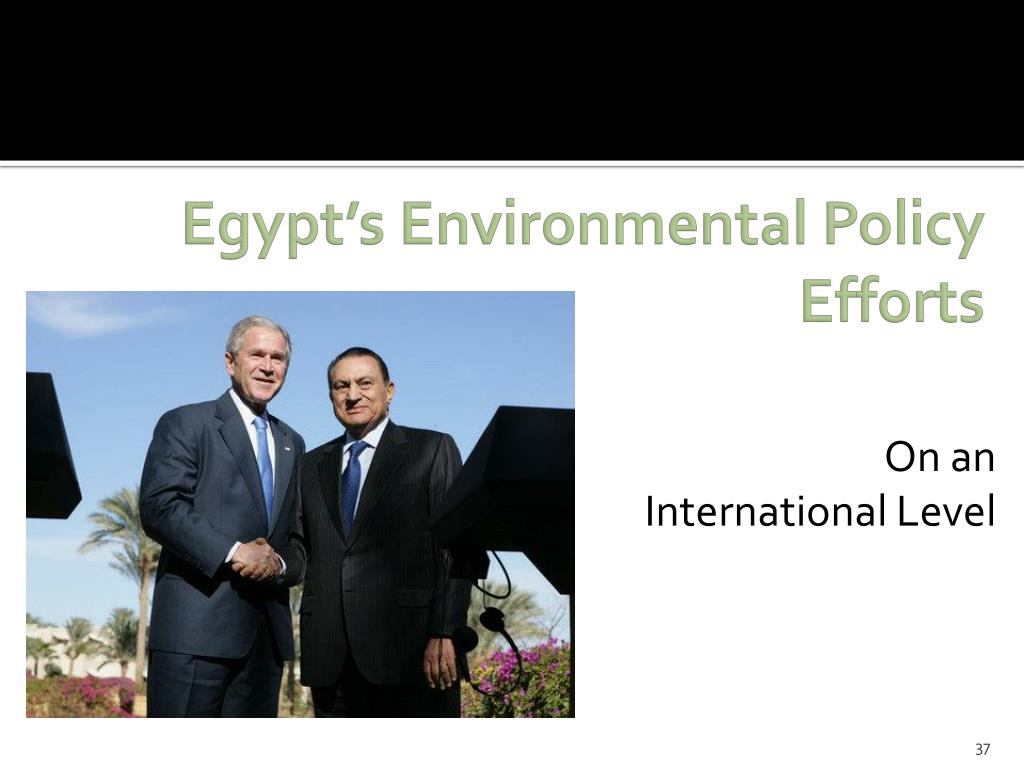 Egypt's Environmental Policy Efforts