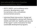 international influences on egyptian environmental policy actors