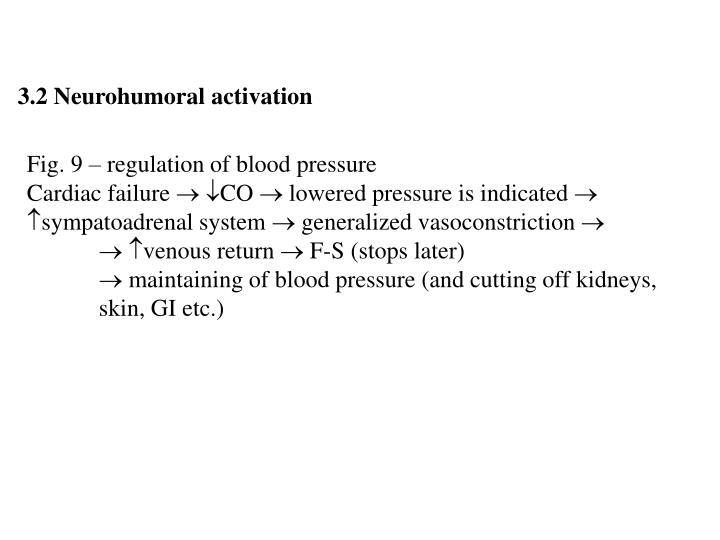 3.2 Neurohumoral activation