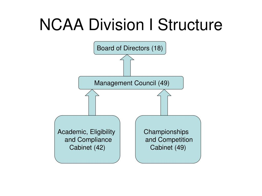 NCAA Division I Structure