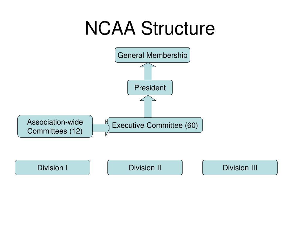 NCAA Structure