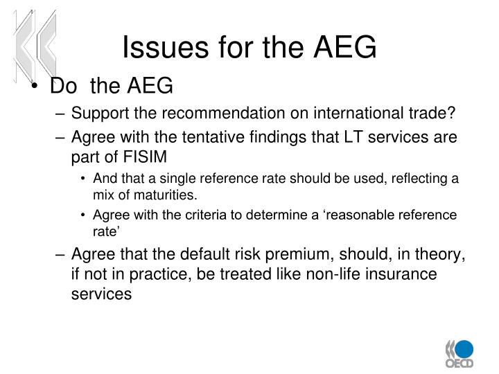 Issues for the AEG