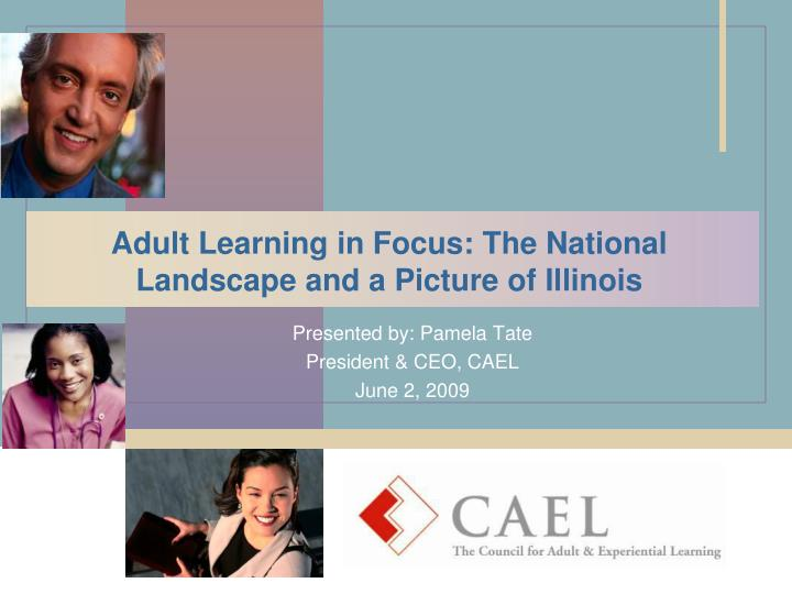 Adult learning in focus the national landscape and a picture of illinois