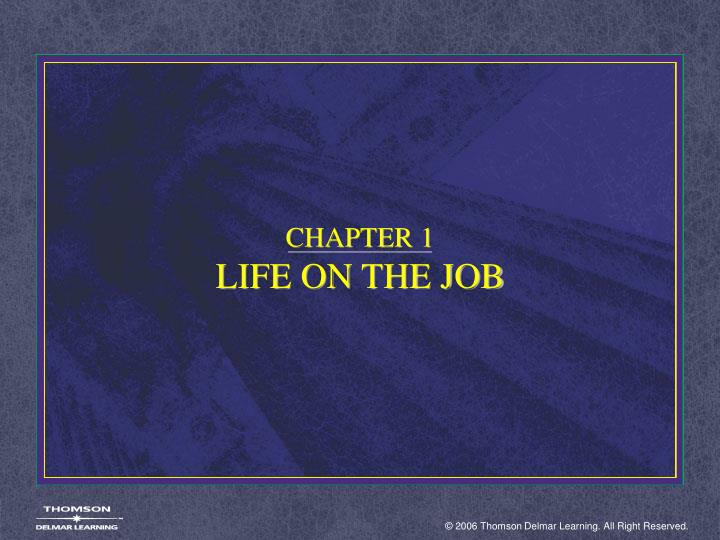 Chapter 1 life on the job