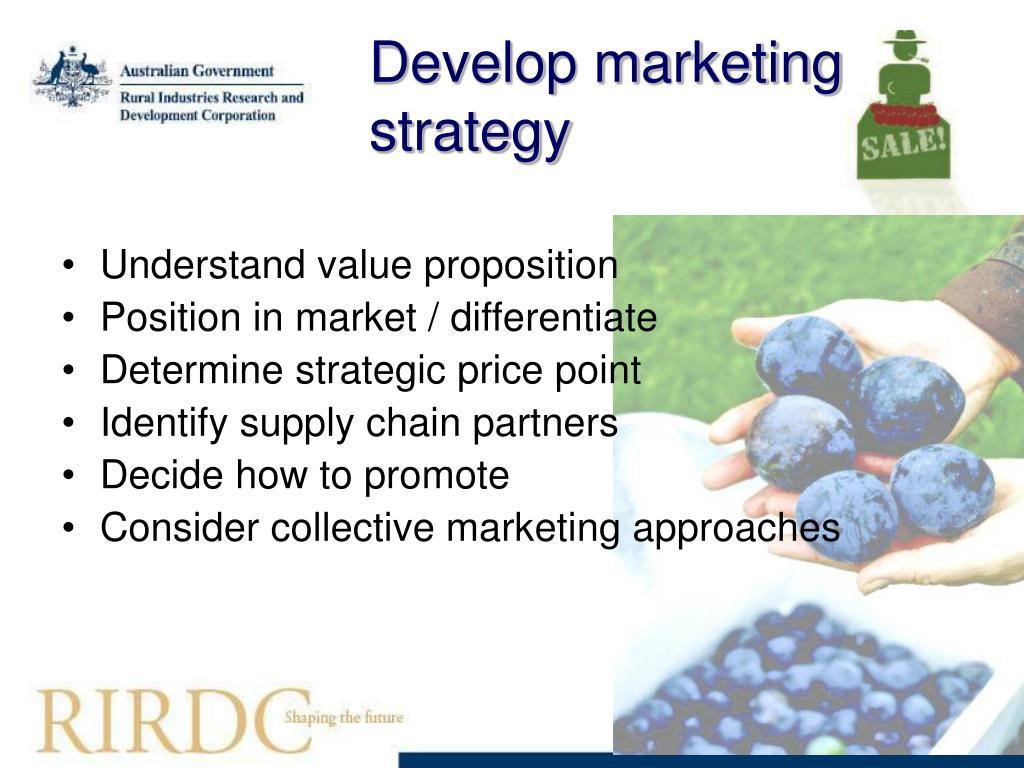 Develop marketing strategy