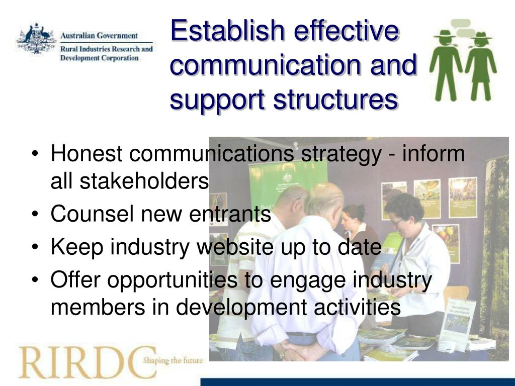 Establish effective communication and support structures