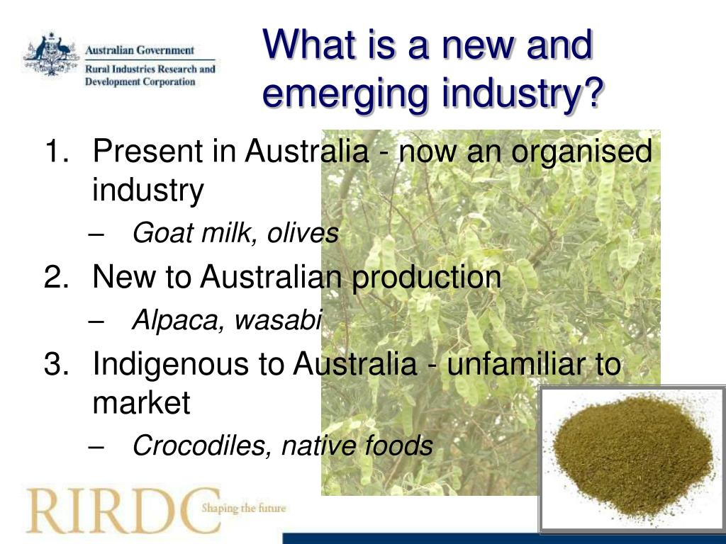 What is a new and emerging industry?