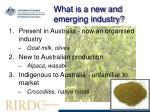 what is a new and emerging industry