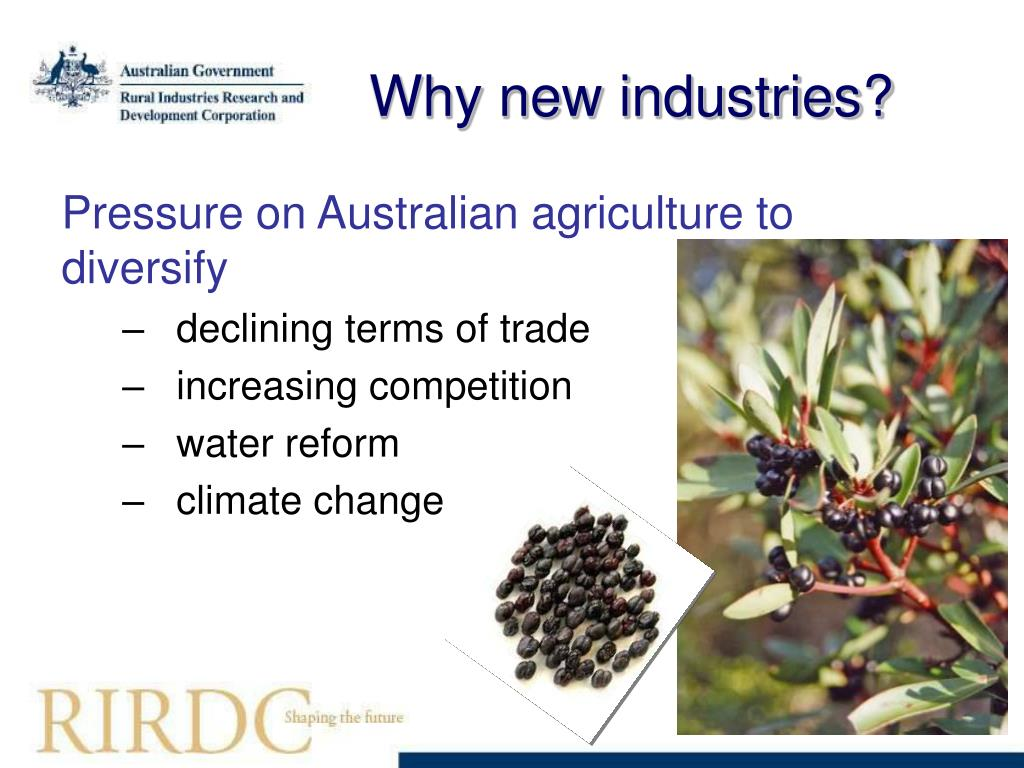 Why new industries?