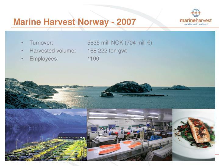 Marine harvest norway 2007