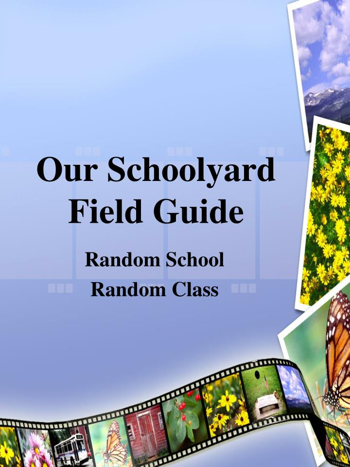 Our schoolyard field guide