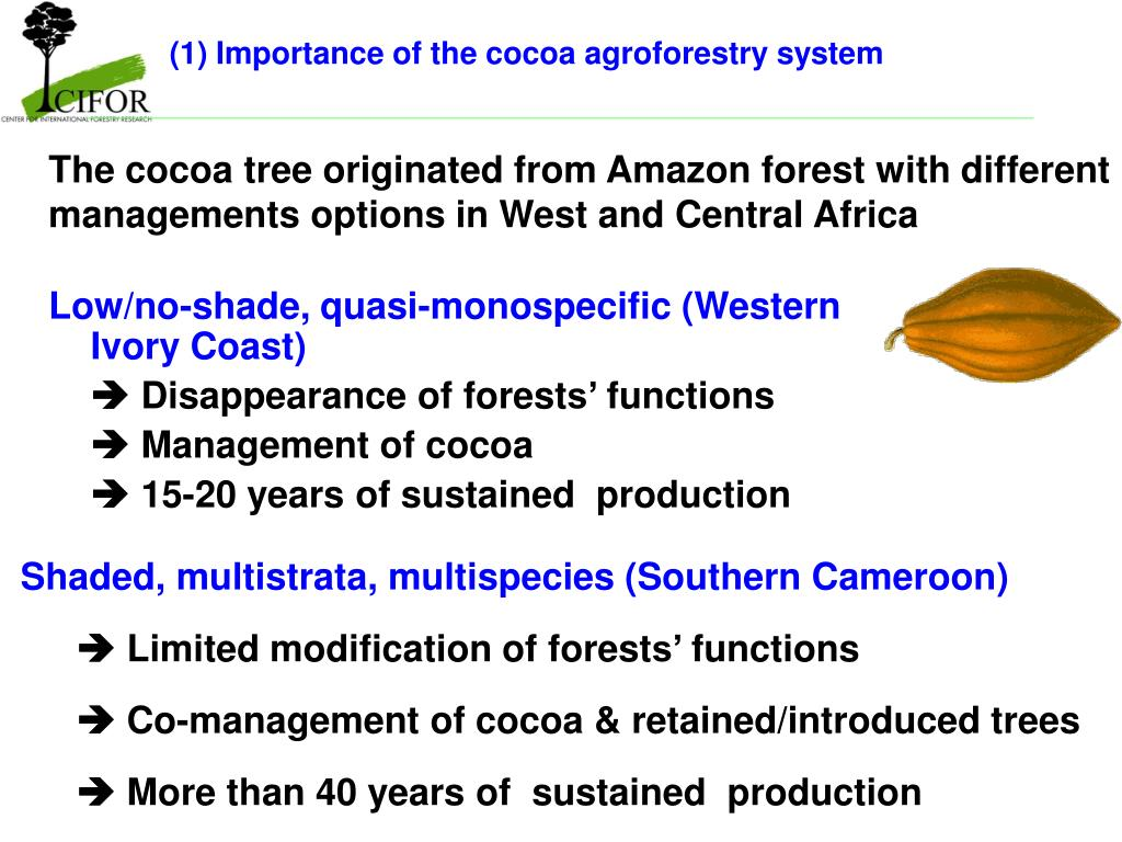 (1) Importance of the cocoa agroforestry system