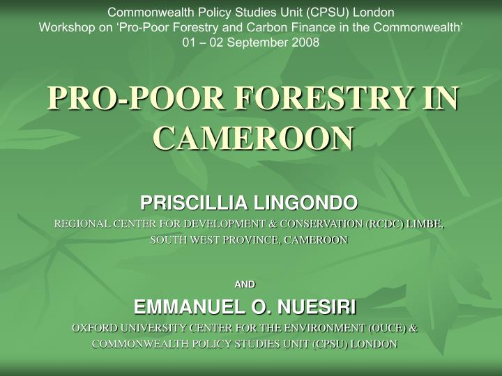 Pro poor forestry in cameroon