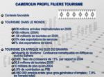cameroun profil filiere tourisme
