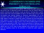 cameroon s number one priority in controlling tobacco