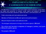 players involved in the implementation of cameroon s number one priority 2